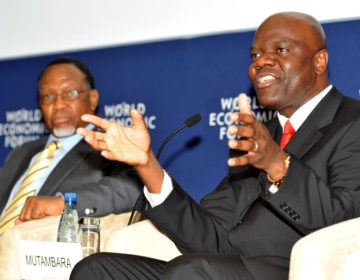 'We need a United States of Africa' – ex-Zim deputy premier