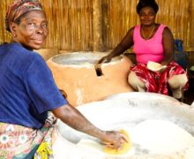 African Development Bank Helps To Create 35,000 Jobs In Agricultural SMEs