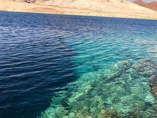 Egypt Cleans Marine Environment